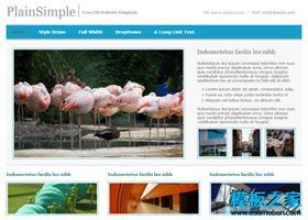 蓝色极简动物类网页模板