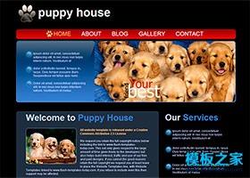 黑色背景宠物之家网页模板