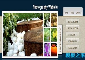 图片库摄影网站模板