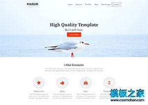 网站设计公司作品展示模板