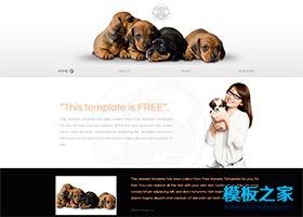漂亮精致宠物狗网页模板
