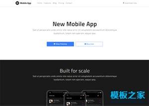 New Mobile App响应式网站模板