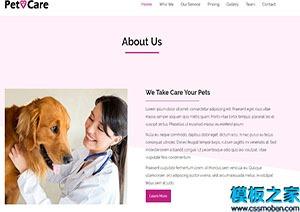 宠物护理医院协会网站模板