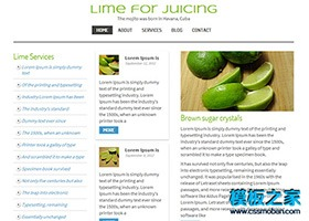 绿色水果宽屏模板
