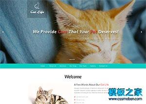 猫咪萌宠物乐园网站模板