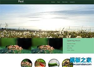 宠物医院网页模板
