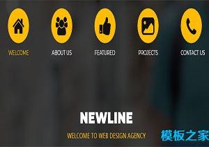 newline小图标CSS网站模板