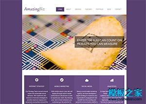 紫色简洁标准商务公司企业网站模板