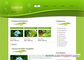 绿色漂亮的企业模板