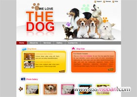 个性的宠物网站模板