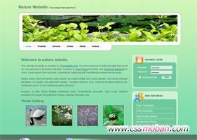 自然网站模板