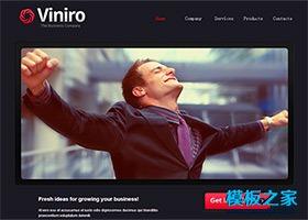 大图展示商务企业网站模板