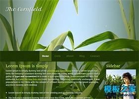 绿色植物背景html5模板