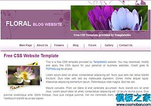 花店CSS布局网站html模板