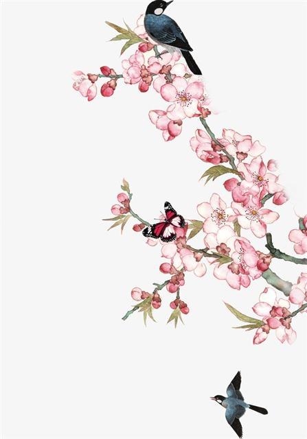 手绘梅花花鸟装饰