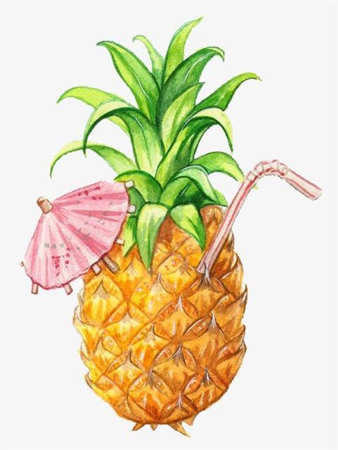 手绘卡通菠萝凤梨