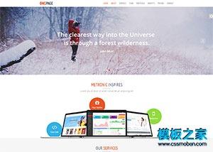标准网站设计公司响应式模板