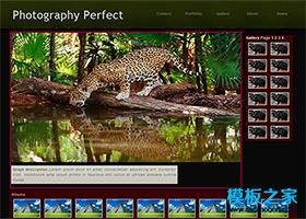 高清摄影图片网站模板