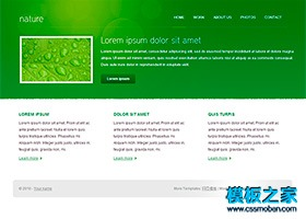 绿色主题外贸企业html网页模板