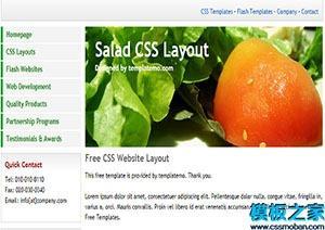 salad单页web网站模板
