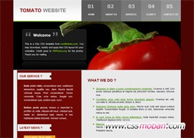 饮食类企业网站模板