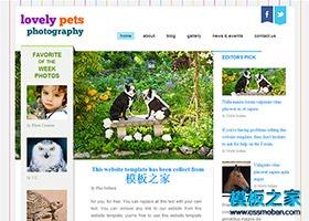动物宠物网站html5模板