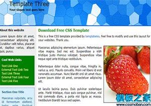 蓝色页眉web水果蔬菜网站模板