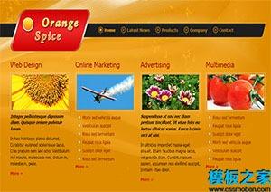 orange spice单页网站模板