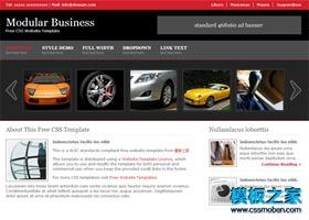 黑色幻灯商务网站模板