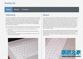 灰色简洁html网页模板