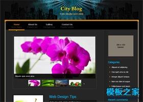 黑色城市个人博客模板