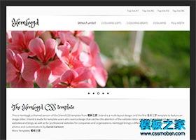 小清新企业网站模板