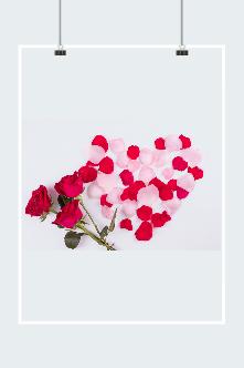 玫瑰花瓣高清图片