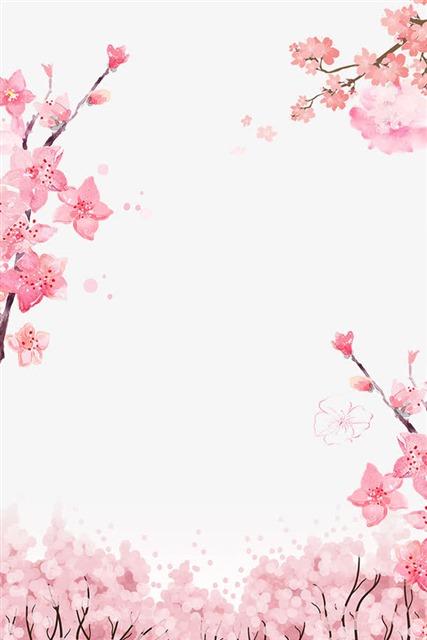 手绘樱花边框
