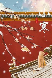 小寒玉兰花树枝猫咪背景图