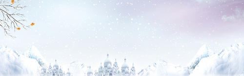 小寒节气雪景banner