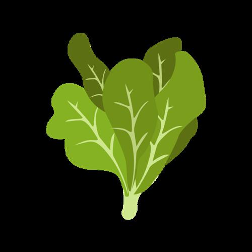 手绘蔬菜免抠图