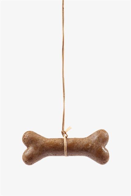 棕色可爱骨头狗粮饼干图片