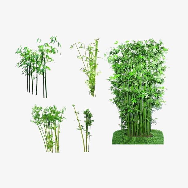 水墨绿色竹子矢量图