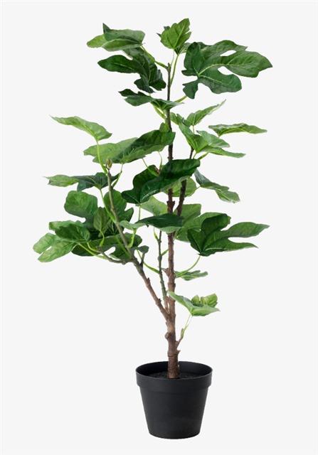 免抠绿色植物盆栽