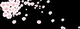 漂浮的桃花花枝花瓣元素