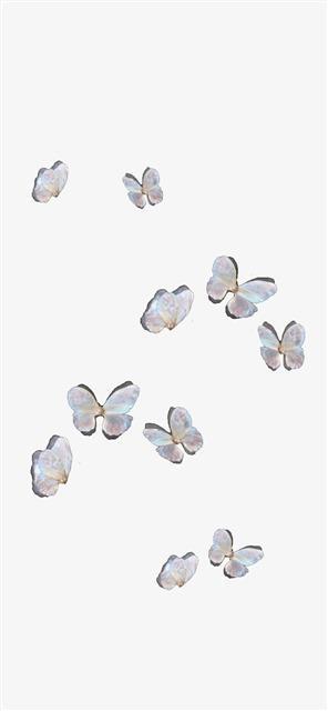 ins风飞舞的蝴蝶