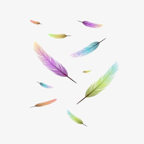 漂浮彩色羽毛