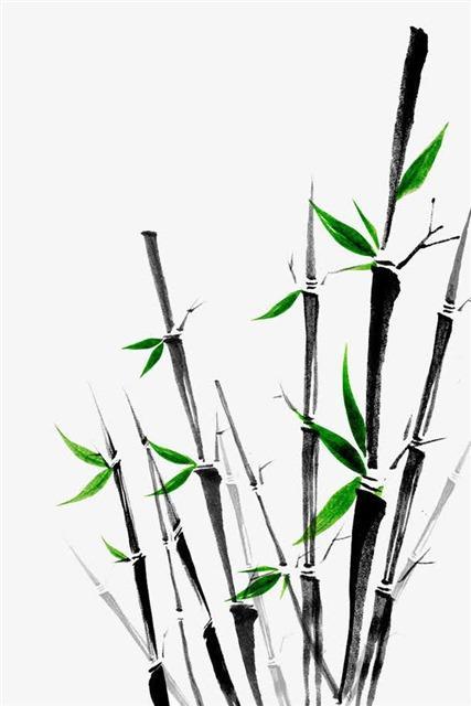 手绘水墨竹子
