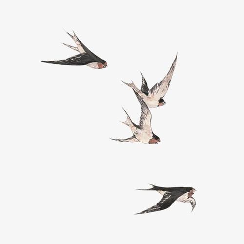中国风燕子矢量图