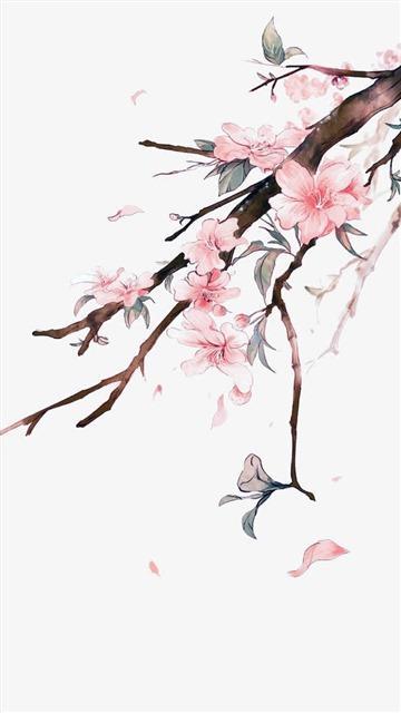 手绘桃花装饰图片