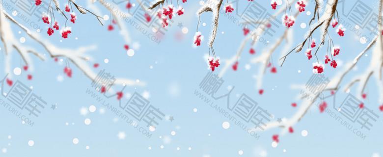 冬季腊梅雪花蓝色banner