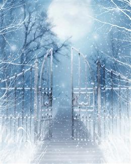 大雪纷飞风景图