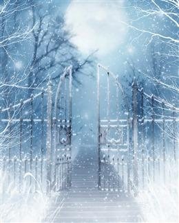 冬天雪花文艺背景