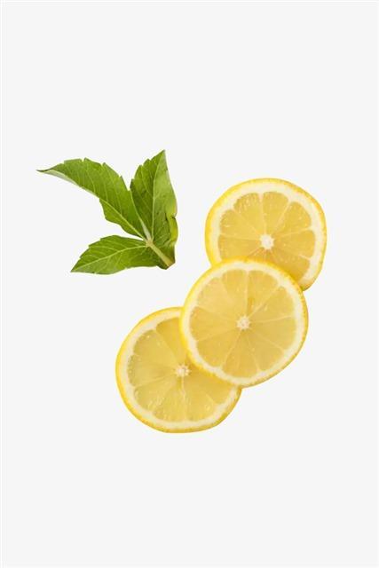 柠檬片装饰图片